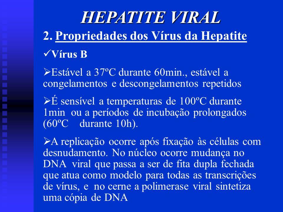 HEPATITE VIRAL 2. Propriedades dos Vírus da Hepatite Vírus B Estável a 37ºC durante 60min., estável a congelamentos e descongelamentos repetidos É sen