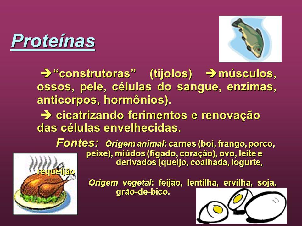 Proteínas construtoras (tijolos) músculos, ossos, pele, células do sangue, enzimas, anticorpos, hormônios). construtoras (tijolos) músculos, ossos, pe