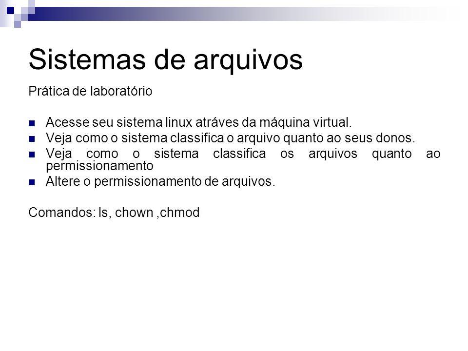 Sistemas de arquivos Prática de laboratório Acesse seu sistema linux atráves da máquina virtual. Veja como o sistema classifica o arquivo quanto ao se