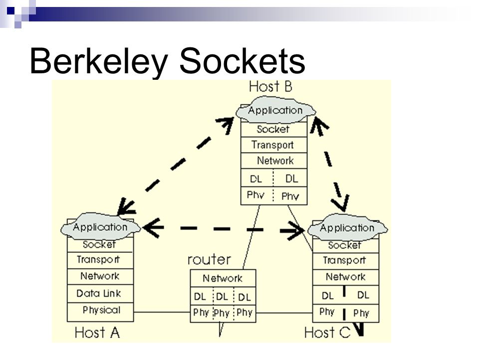 Berkeley Sockets