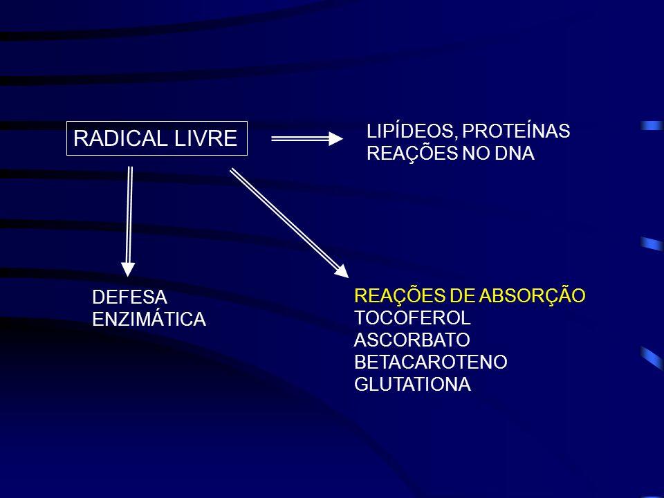 RADICAL LIVRE LIPÍDEOS, PROTEÍNAS REAÇÕES NO DNA REAÇÕES DE ABSORÇÃO TOCOFEROL ASCORBATO BETACAROTENO GLUTATIONA DEFESA ENZIMÁTICA