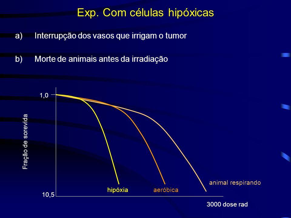 Exp. Com células hipóxicas a)Interrupção dos vasos que irrigam o tumor b)Morte de animais antes da irradiação 10,5 1,0 Fração de sorevida 3000 dose ra