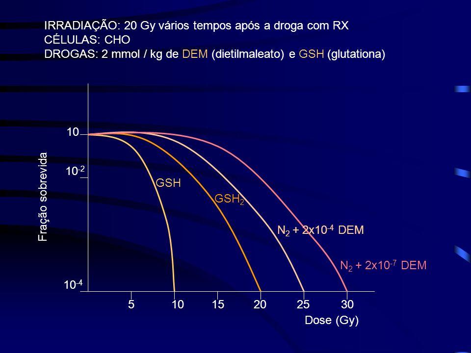 IRRADIAÇÃO: 20 Gy vários tempos após a droga com RX CÉLULAS: CHO DROGAS: 2 mmol / kg de DEM (dietilmaleato) e GSH (glutationa) 51015202530 10 -4 10 -2