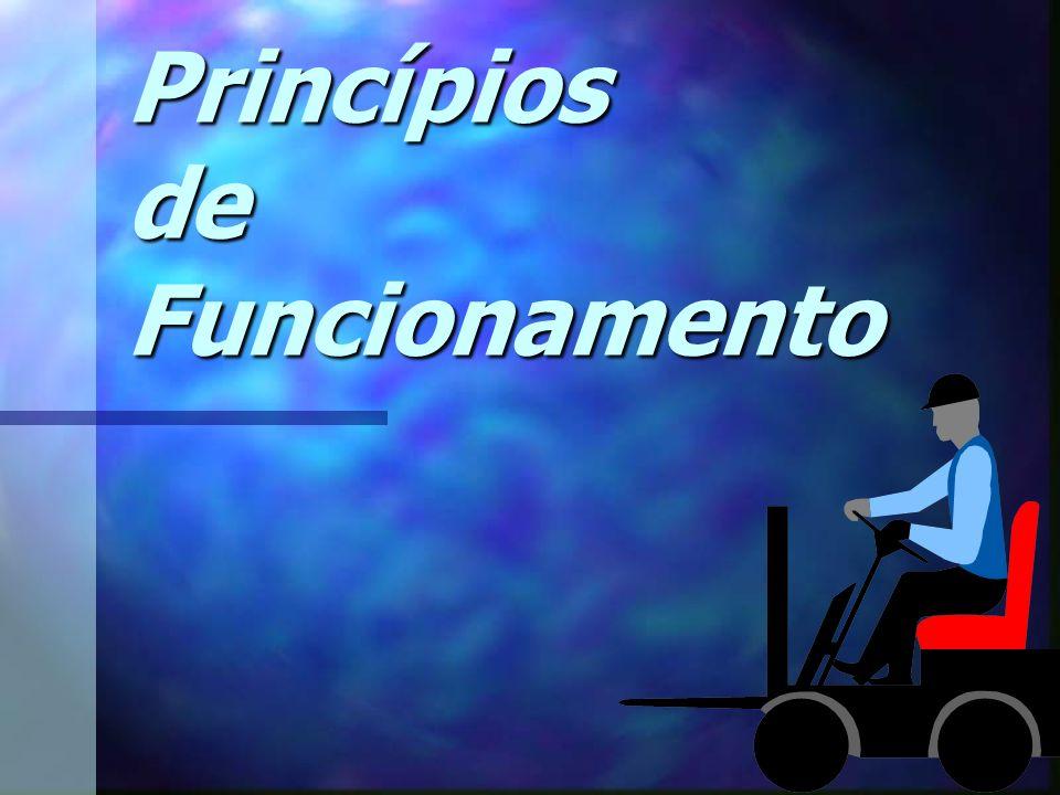 Edson Donizetti da Silva - TST - São Carlos - SP Regras Gerais Verifique Verifique o peso da carga.