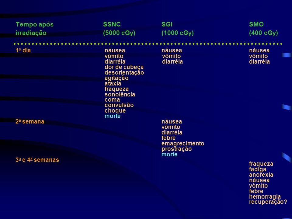 Tempo após SSNC SGISMO irradiação(5000 cGy) (1000 cGy) (400 cGy) 1 o dia náusea náusea náusea vômito vômito vômito diarréia diarréia diarréia dor de c