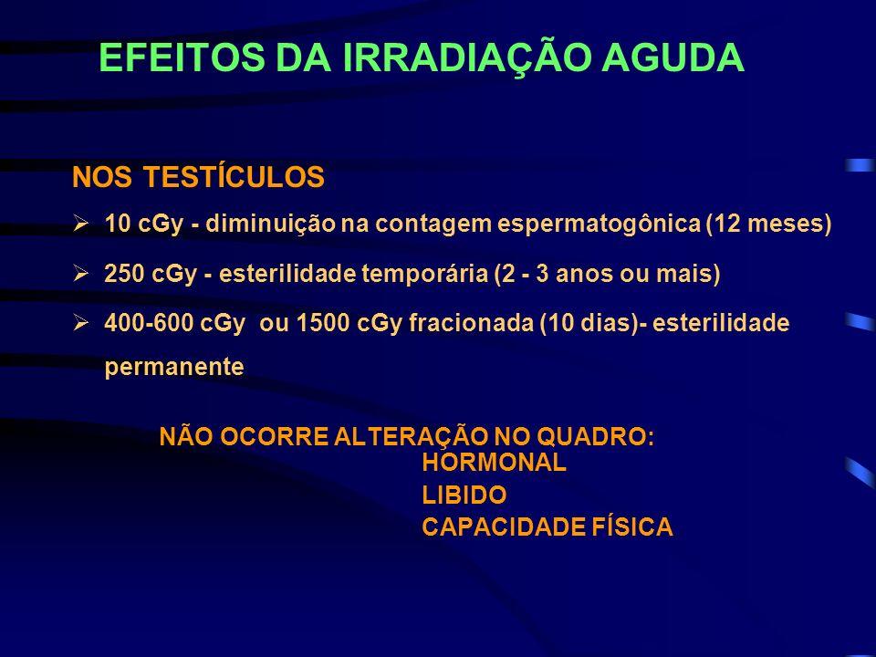 EFEITOS DA IRRADIAÇÃO AGUDA NOS TESTÍCULOS 10 cGy - diminuição na contagem espermatogônica (12 meses) 250 cGy - esterilidade temporária (2 - 3 anos ou