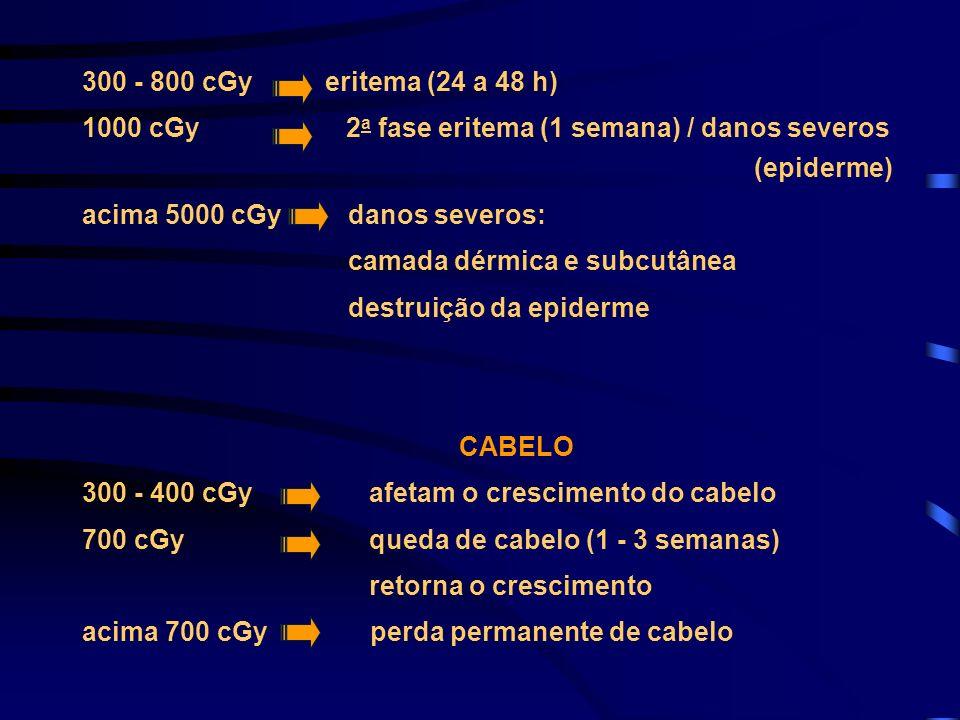 300 - 800 cGy eritema (24 a 48 h) 1000 cGy 2 a fase eritema (1 semana) / danos severos (epiderme) acima 5000 cGy danos severos: camada dérmica e subcu