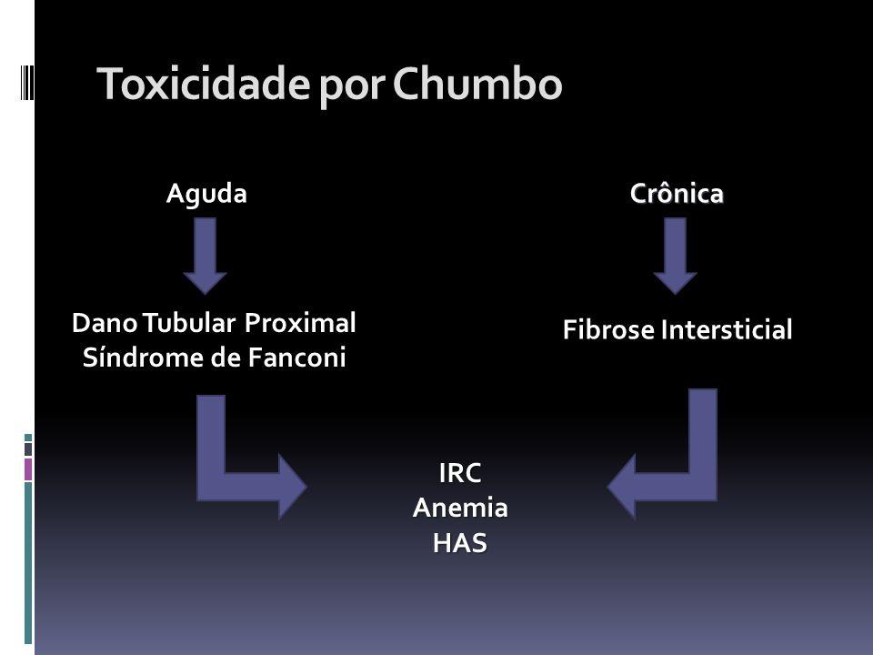 Toxicidade por Chumbo AgudaCrônica Dano Tubular Proximal Síndrome de Fanconi Fibrose Intersticial IRCAnemiaHAS