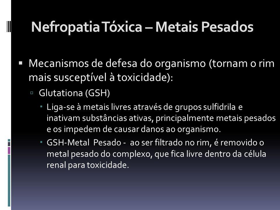 Nefropatia Tóxica – Metais Pesados Mecanismos de defesa do organismo (tornam o rim mais susceptível à toxicidade): Glutationa (GSH) Liga-se à metais l