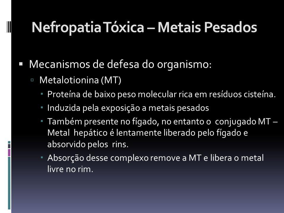 Nefropatia Tóxica – Metais Pesados Mecanismos de defesa do organismo: Metalotionina (MT) Proteína de baixo peso molecular rica em resíduos cisteína. I