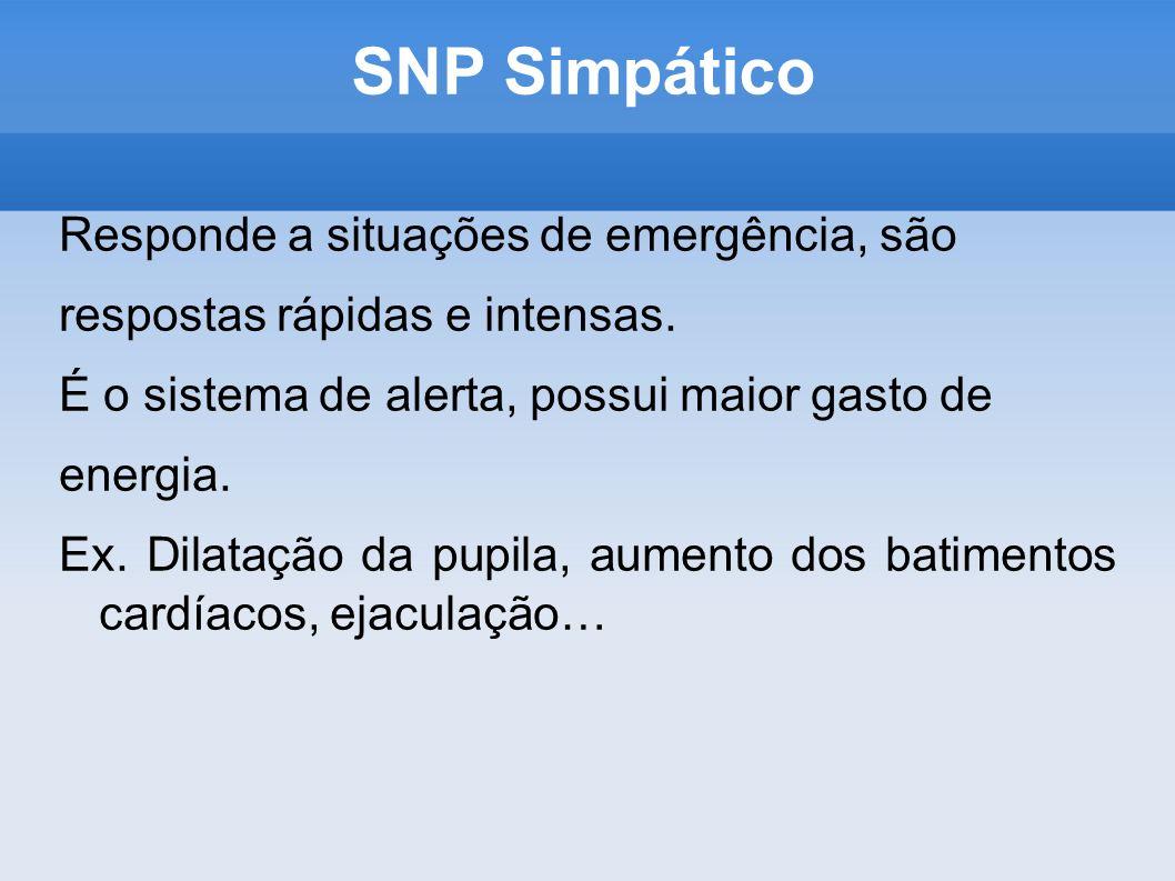SNP Simpático Responde a situações de emergência, são respostas rápidas e intensas. É o sistema de alerta, possui maior gasto de energia. Ex. Dilataçã