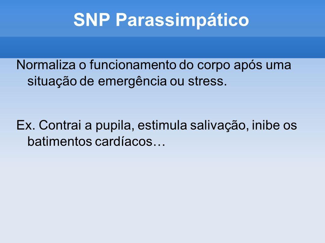 SNP Parassimpático Normaliza o funcionamento do corpo após uma situação de emergência ou stress. Ex. Contrai a pupila, estimula salivação, inibe os ba