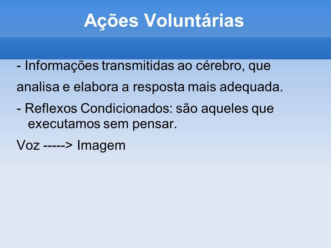 Ações Voluntárias - Informações transmitidas ao cérebro, que analisa e elabora a resposta mais adequada. - Reflexos Condicionados: são aqueles que exe