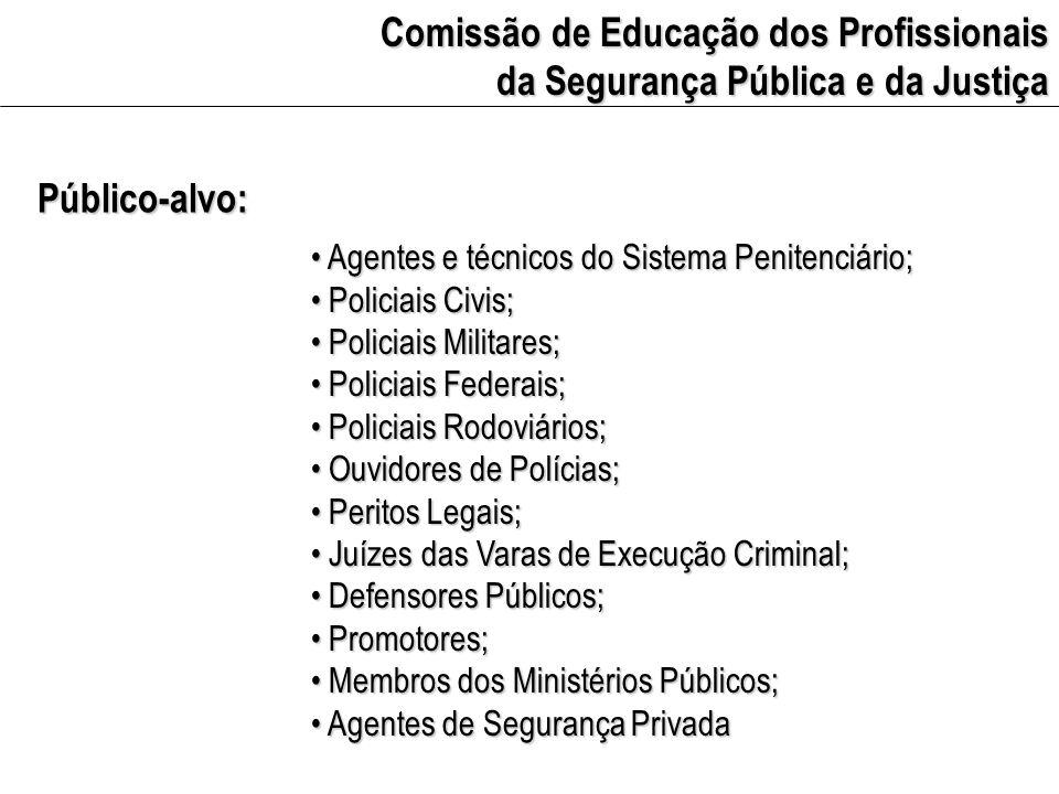 Comissão de Educação dos Profissionais da Segurança Pública e da Justiça Estrutura Contextualização da EDH no Brasil Contextualização da EDH no Brasil Objetivos e estratégias da EDH Objetivos e estratégias da EDH EDH para profissionais das áreas de justiça e de segurança pública EDH para profissionais das áreas de justiça e de segurança pública Resgate histórico da EDH para o público-alvo Resgate histórico da EDH para o público-alvo Princípios para EDH junto ao público-alvo Princípios para EDH junto ao público-alvo Propostas Propostas