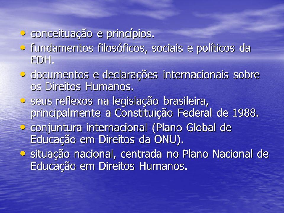 Ação III (Fevereiro-junho 2008): Estruturação e fortalecimento do Comitê Estadual de Educação em Direitos Humanos.