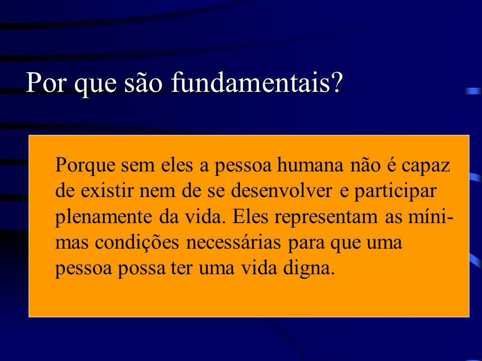 Direitos humanos : Direitos fundamentais da pessoa humana