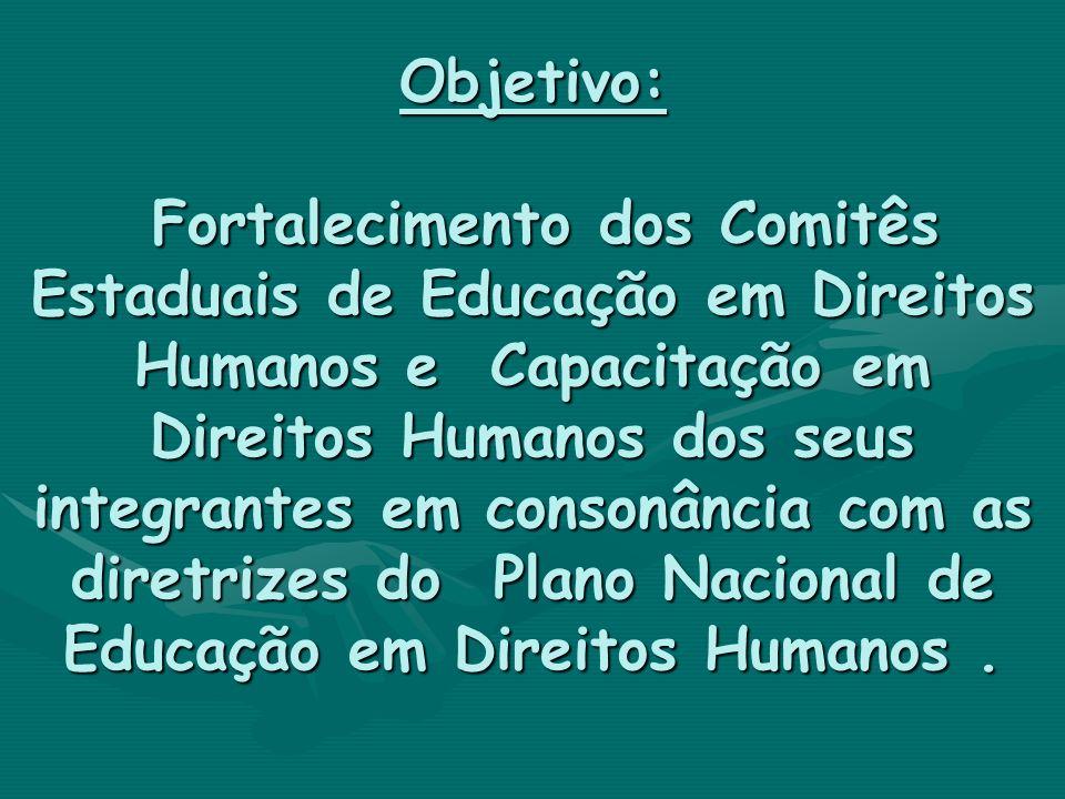 Objetivo: Fortalecimento dos Comitês Estaduais de Educação em Direitos Humanos e Capacitação em Direitos Humanos dos seus integrantes em consonância c