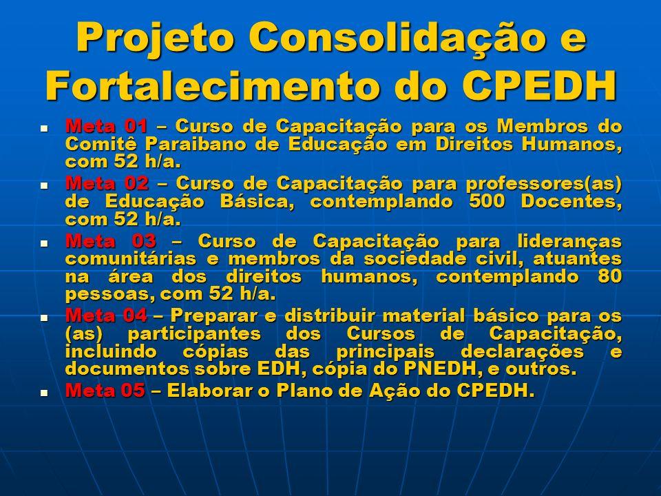 Projeto Consolidação e Fortalecimento do CPEDH Meta 06 – Realizar oficinas de elaboração do Plano Estadual de Educação em Direitos Humanos.
