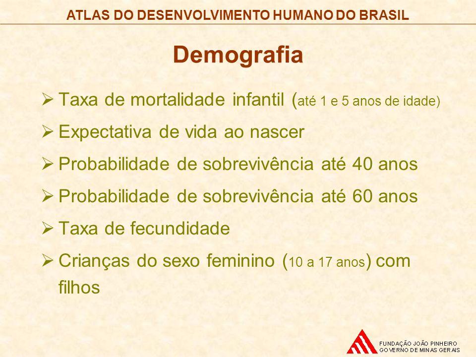 ATLAS DO DESENVOLVIMENTO HUMANO DO BRASIL Demografia Taxa de mortalidade infantil ( até 1 e 5 anos de idade) Expectativa de vida ao nascer Probabilida