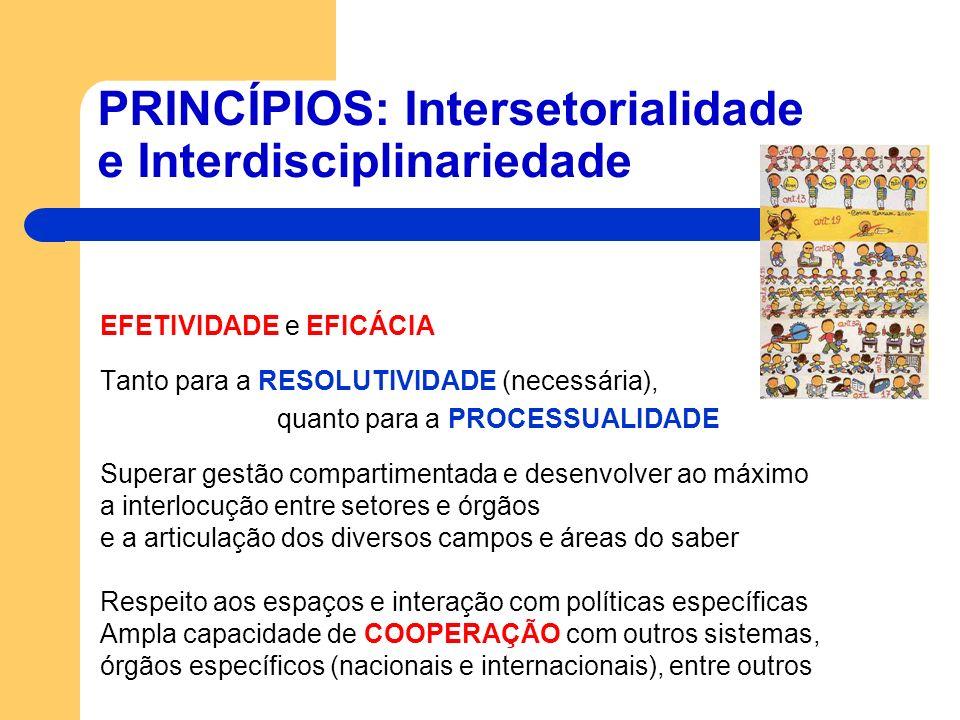 PRINCÍPIOS: Intersetorialidade e Interdisciplinariedade EFETIVIDADE e EFICÁCIA Tanto para a RESOLUTIVIDADE (necessária), quanto para a PROCESSUALIDADE
