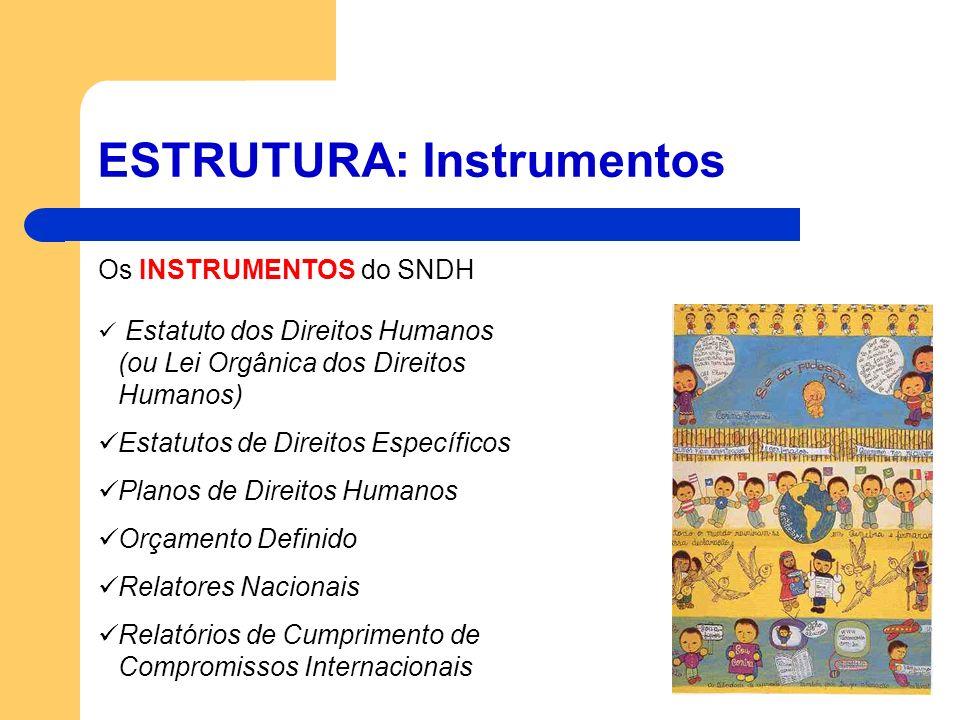 ESTRUTURA: Instrumentos Os INSTRUMENTOS do SNDH Estatuto dos Direitos Humanos (ou Lei Orgânica dos Direitos Humanos) Estatutos de Direitos Específicos