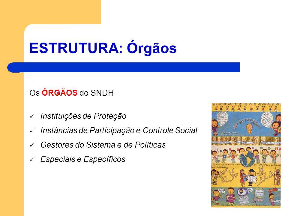 ESTRUTURA: Órgãos Os ÓRGÃOS do SNDH Instituições de Proteção Instâncias de Participação e Controle Social Gestores do Sistema e de Políticas Especiais