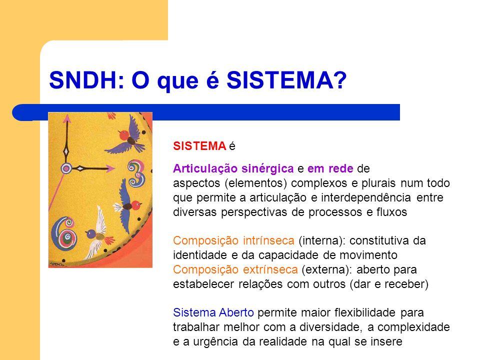 SNDH: O que é SISTEMA? SISTEMA é Articulação sinérgica e em rede de aspectos (elementos) complexos e plurais num todo que permite a articulação e inte