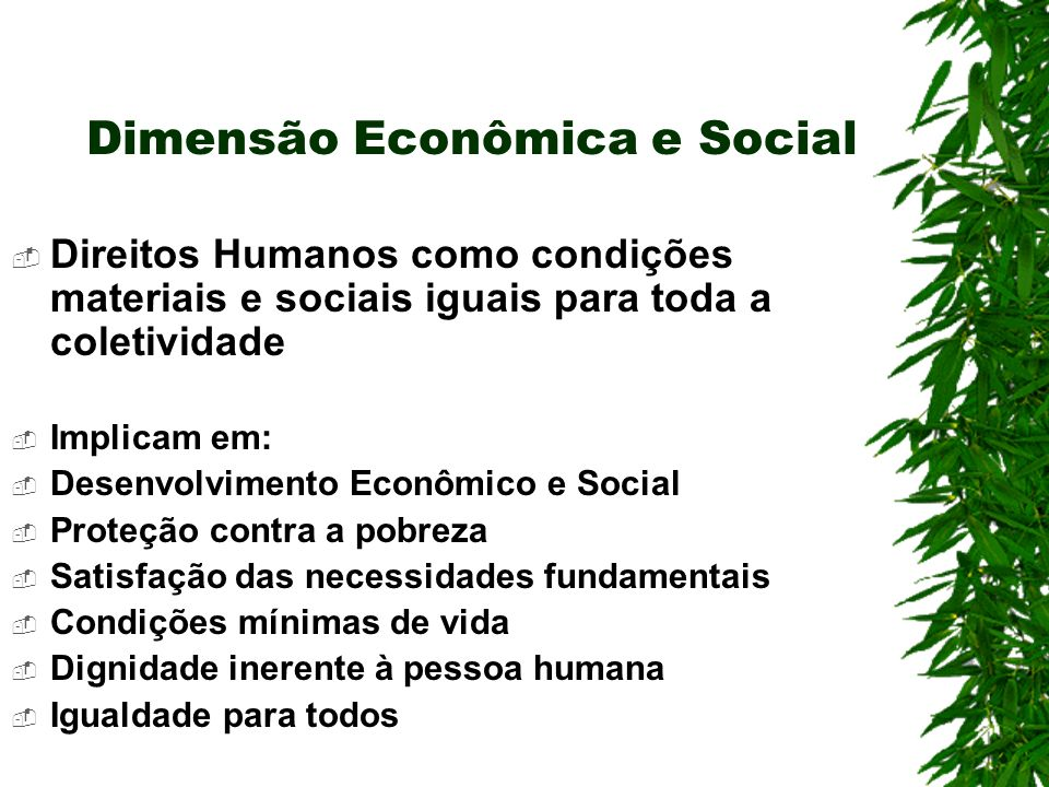 Dimensão Econômica e Social Direitos Humanos como condições materiais e sociais iguais para toda a coletividade Implicam em: Desenvolvimento Econômico e Social Proteção contra a pobreza Satisfação das necessidades fundamentais Condições mínimas de vida Dignidade inerente à pessoa humana Igualdade para todos