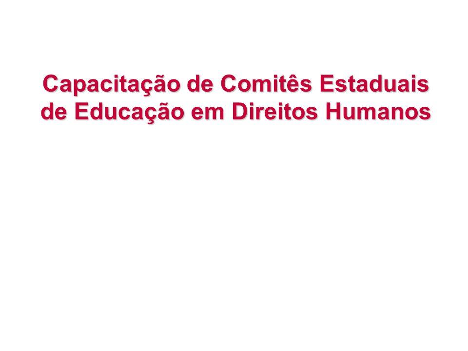 Capacitação de Comitês Estaduais de Educação em Direitos Humanos