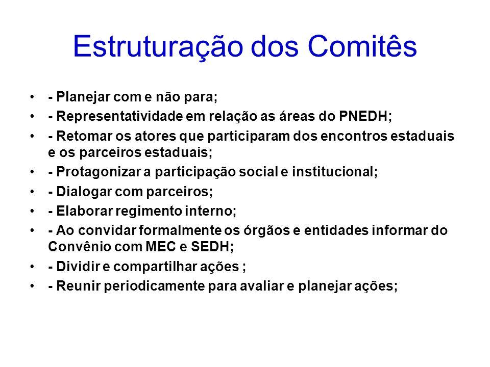 Estruturação dos Comitês - Planejar com e não para; - Representatividade em relação as áreas do PNEDH; - Retomar os atores que participaram dos encont