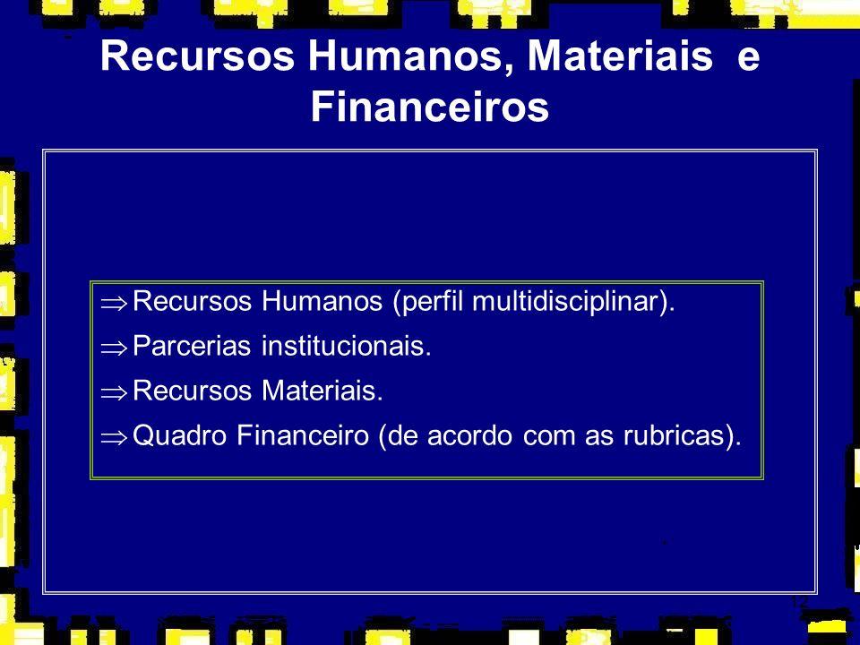 12 Recursos Humanos, Materiais e Financeiros ÞRecursos Humanos (perfil multidisciplinar). ÞParcerias institucionais. ÞRecursos Materiais. ÞQuadro Fina