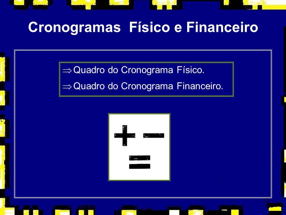 13 Cronogramas Físico e Financeiro ÞQuadro do Cronograma Físico. ÞQuadro do Cronograma Financeiro.