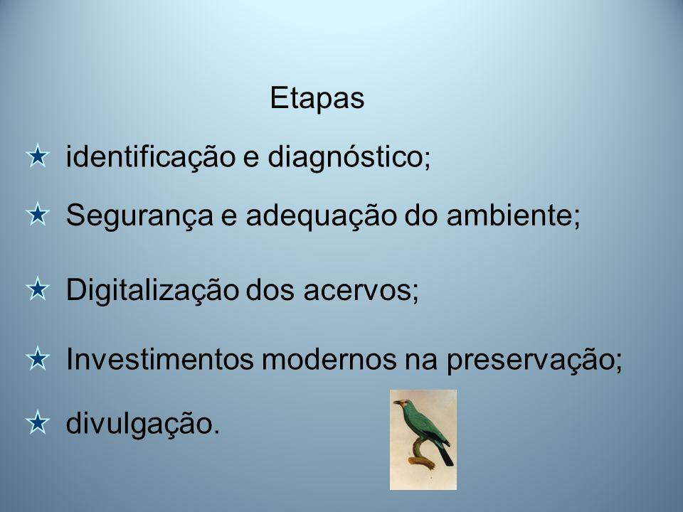 identificação e diagnóstico ; Etapas Segurança e adequação do ambiente; Digitalização dos acervos; Investimentos modernos na preservação; divulgação.