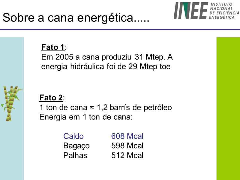 Sobre a cana energética..... Fato 1: Em 2005 a cana produziu 31 Mtep. A energia hidráulica foi de 29 Mtep toe Fato 2: 1 ton de cana 1,2 barrís de petr