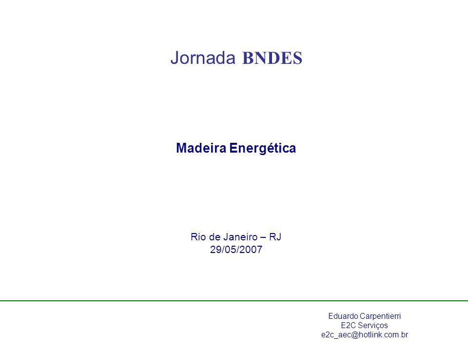 Jornada BNDES Madeira Energética Rio de Janeiro – RJ 29/05/2007 Eduardo Carpentierri E2C Serviços e2c_aec@hotlink.com.br