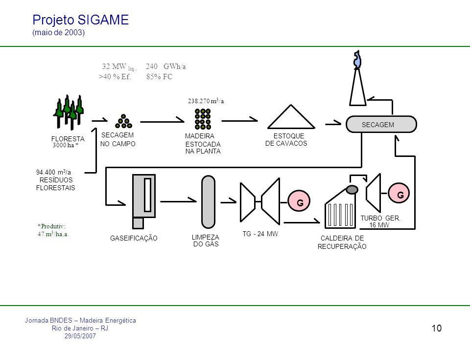 10 Projeto SIGAME (maio de 2003) Jornada BNDES – Madeira Energética Rio de Janeiro – RJ 29/05/2007