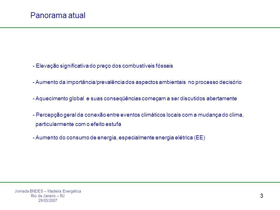 4 Panorama no Brasil Percebe-se: - Mudança de postura do Governo Federal em relação às fontes renováveis de energia; - Incentivo ao uso de novas fontes renováveis de energia (álcool e biodiesel são exemplos); - Preconceito ao uso de biomassa para produção de EE; - De modo geral empresas de EE não produzem o seu próprio combustível e ainda - Demanda crescente por E, particularmente EE - Dificuldades na aprovação de projetos hidroelétricos - Instabilidade no suprimento de GN Jornada BNDES – Madeira Energética Rio de Janeiro – RJ 29/05/2007