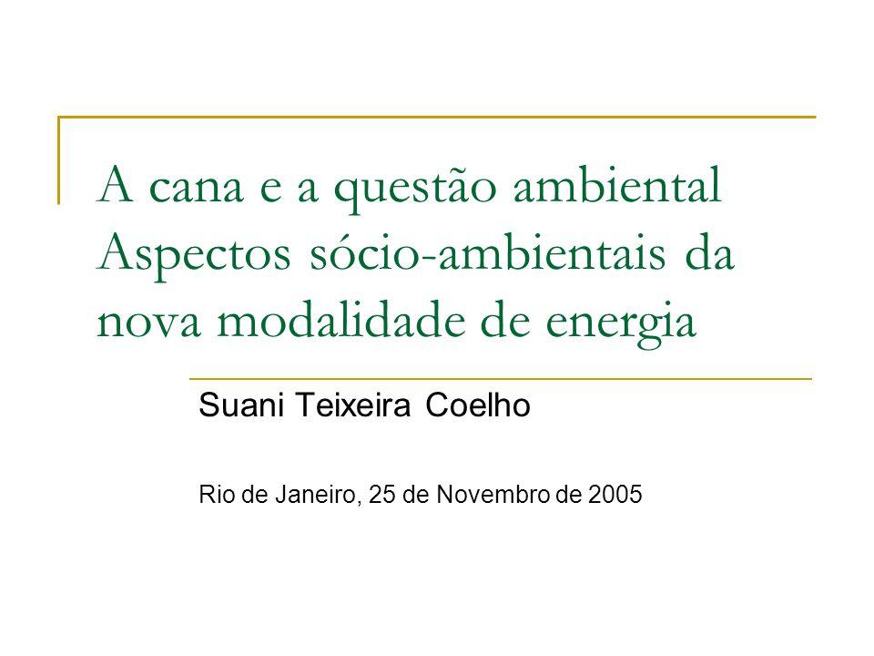 A cana e a questão ambiental Aspectos sócio-ambientais da nova modalidade de energia Suani Teixeira Coelho Rio de Janeiro, 25 de Novembro de 2005