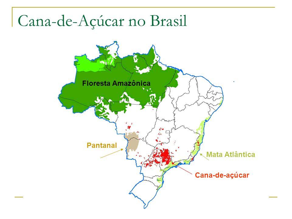 Floresta Amazônica Cana-de-açúcar Mata Atlântica Pantanal Cana-de-Açúcar no Brasil