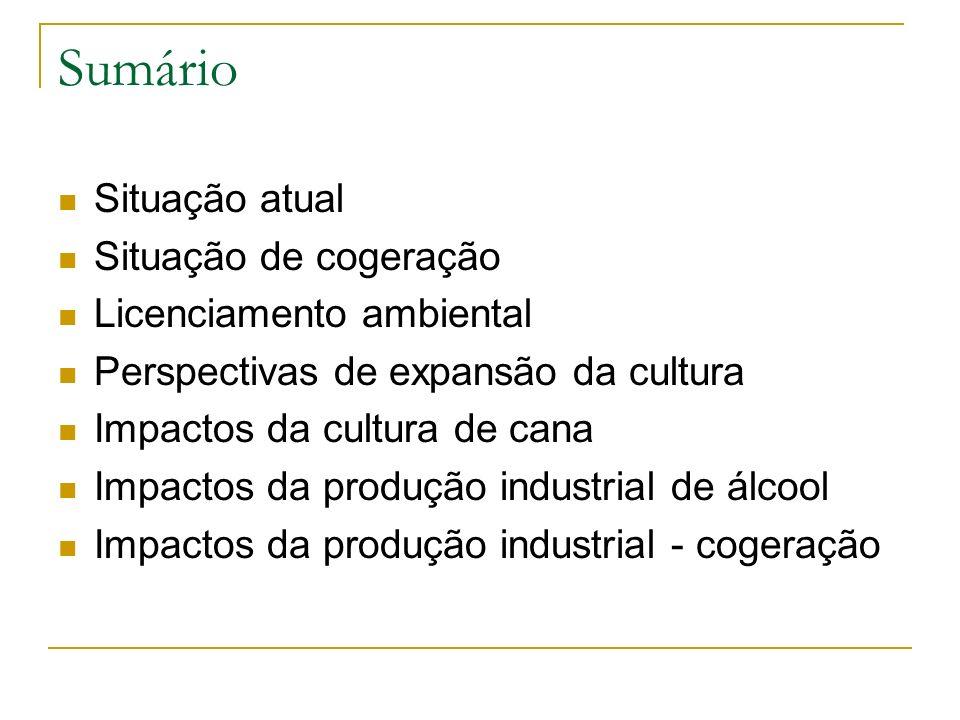 Sumário Situação atual Situação de cogeração Licenciamento ambiental Perspectivas de expansão da cultura Impactos da cultura de cana Impactos da produ