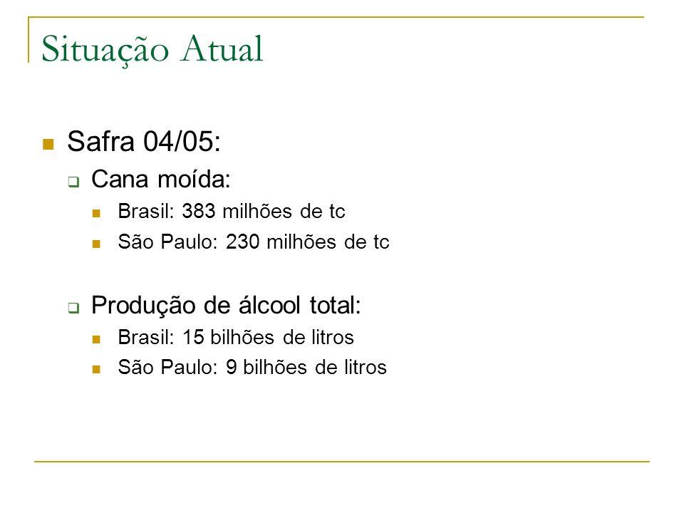 Situação Atual Safra 04/05: Cana moída: Brasil: 383 milhões de tc São Paulo: 230 milhões de tc Produção de álcool total: Brasil: 15 bilhões de litros