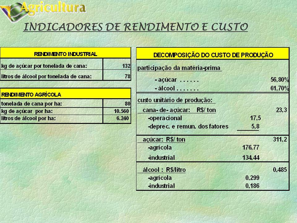 INDICADORES DE RENDIMENTO E CUSTO