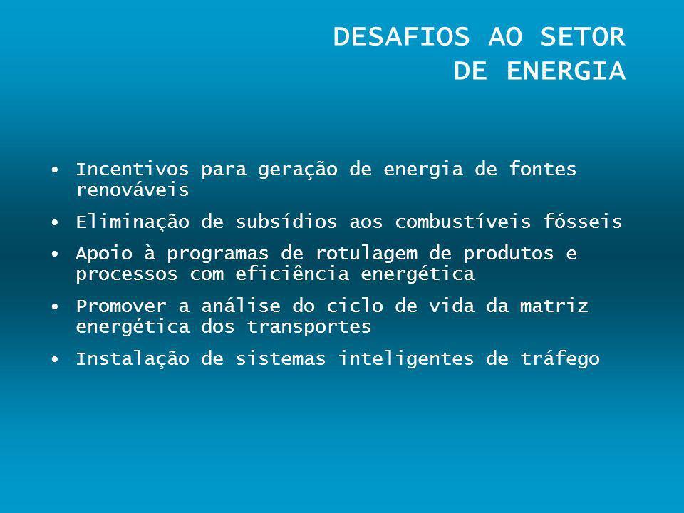 DESAFIOS AO SETOR DE ENERGIA Incentivos para geração de energia de fontes renováveis Eliminação de subsídios aos combustíveis fósseis Apoio à programa