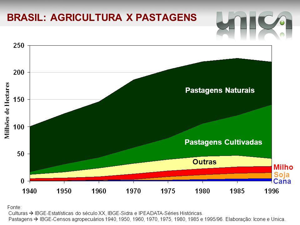BRASIL: AGRICULTURA X PASTAGENS Pastagens Cultivadas Pastagens Naturais Outras Fonte: Culturas IBGE-Estatísticas do século XX, IBGE-Sidra e IPEADATA-S