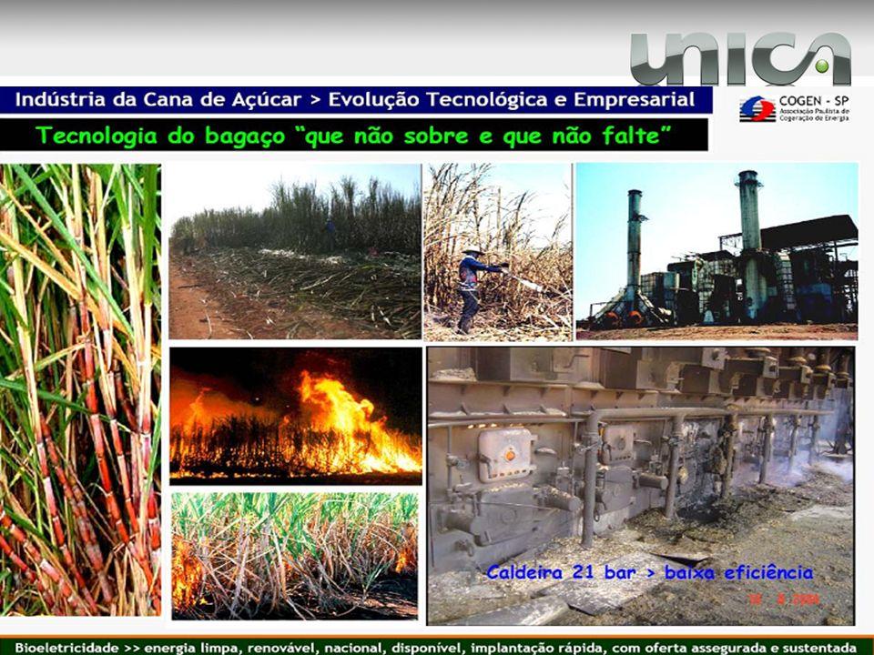 Nota: Defensivos: herbicida, fungicida, inseticida, acaricida e outros (antibrotantes, reguladores de crescimento, óleo mineral e espalhante adesivo).