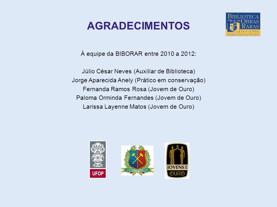 AGRADECIMENTOS À equipe da BIBORAR entre 2010 a 2012: Júlio César Neves (Auxiliar de Biblioteca) Jorge Aparecida Anely (Prático em conservação) Fernan