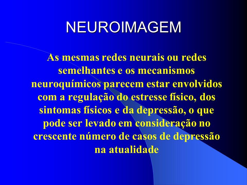 NEUROIMAGEM As mesmas redes neurais ou redes semelhantes e os mecanismos neuroquímicos parecem estar envolvidos com a regulação do estresse físico, do