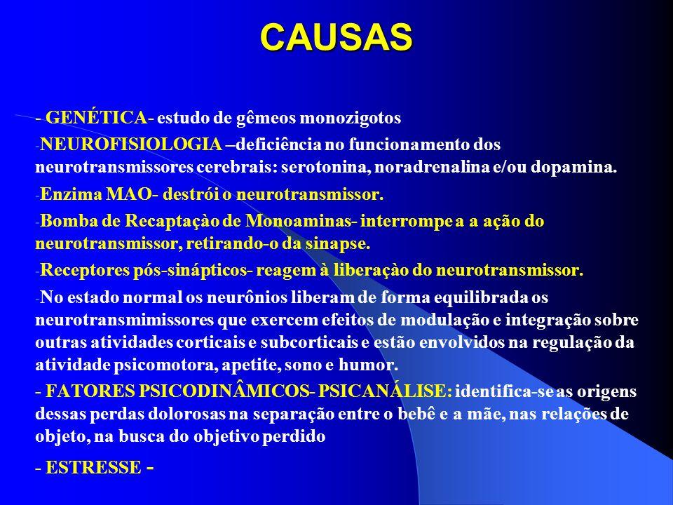 CAUSAS - GENÉTICA- estudo de gêmeos monozigotos - NEUROFISIOLOGIA –deficiência no funcionamento dos neurotransmissores cerebrais: serotonina, noradren
