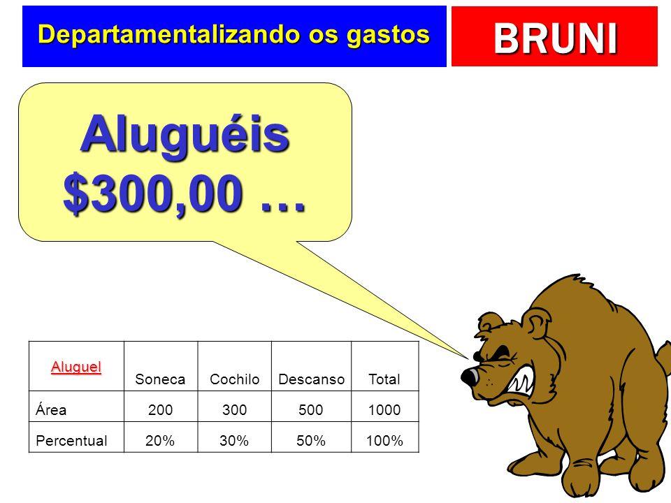 BRUNI Rateando Sonhe Bem … Outras informações importantes … CIFs Aluguel ($300,00) Depreciação ($200,00) Outros ($100,00) Função da área utilizada Fun