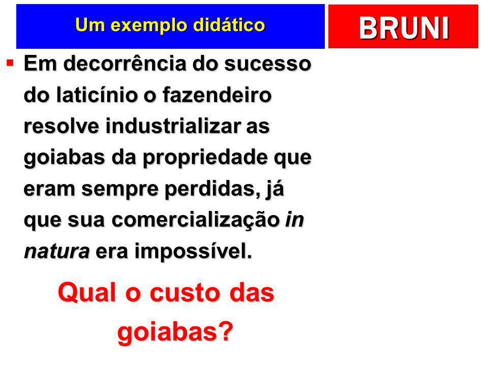 BRUNI Um exemplo didático Em decorrência do sucesso do laticínio o fazendeiro resolve industrializar as goiabas da propriedade que eram sempre perdida